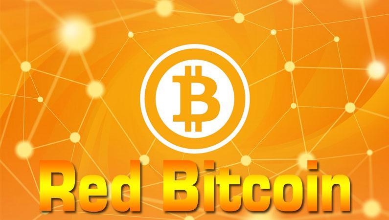 El funcionamiento de la Red Bitcoin, Peer to Peer, criptomoneda